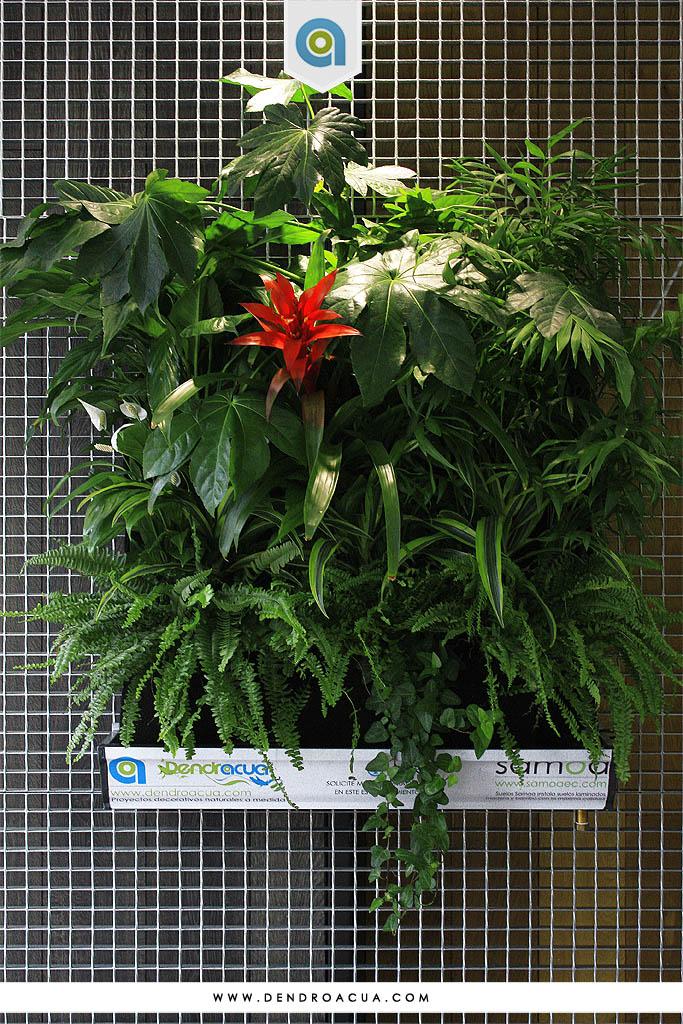 jardin vertical instalacion empresa dendroacua zaragoza 4