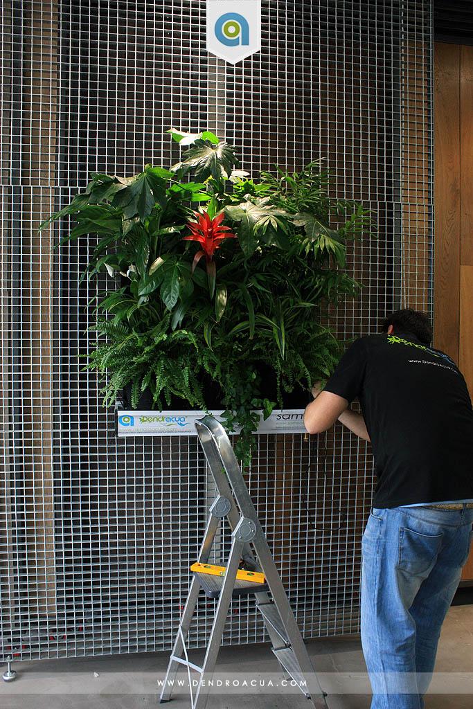 jardin vertical instalacion empresa dendroacua zaragoza