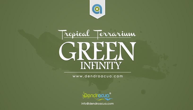 terrario a medida GreeN INFINITY