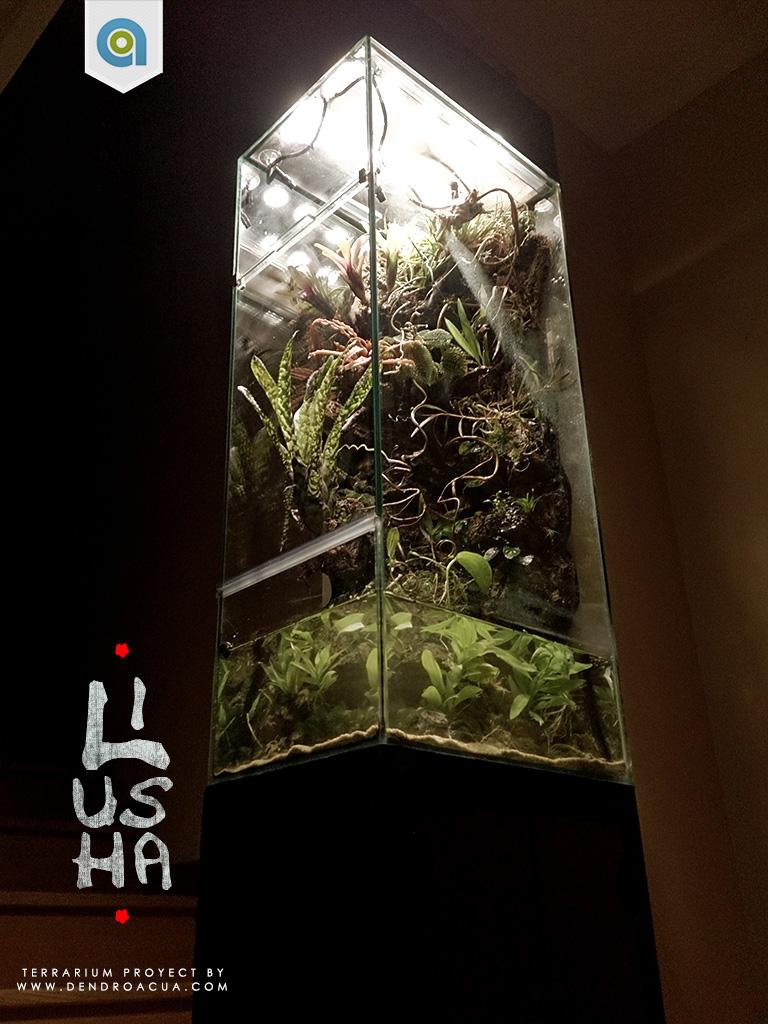 terrario a medida dendroacua Liusha 4