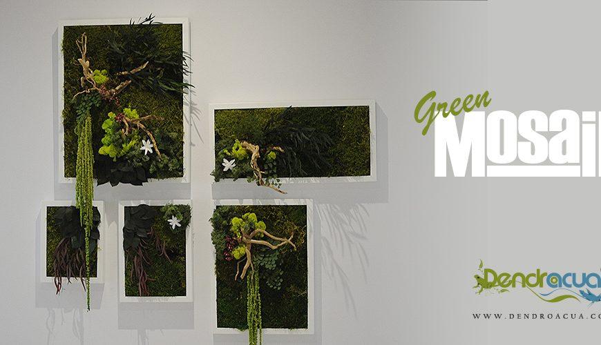 Kokedama peluquerias cebado dendroacua acuarios - Cuadro jardin vertical ...