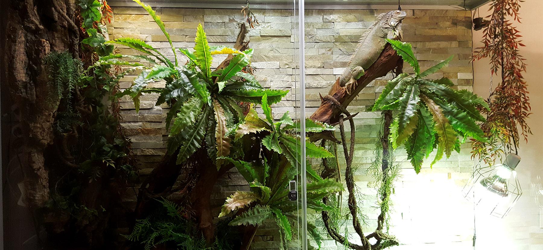 terrario-gigante-huge-vivarium